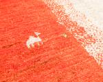 今週末イベント開催のお知らせ イロトリドリの世界in御殿場