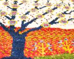 今週末イベント開催のお知らせ イロトリドリの世界in豊橋