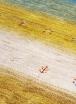 イロトリドリの世界in掛川 今週末開催!