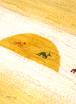イロトリドリの世界in四日市 5月開催告知!