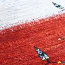 アマレ・98×62・赤・ベージュ・糸杉・羊・原毛・玄関サイズ・アップ画