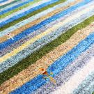 アマレ・92×62・青・縞模様・植物・玄関サイズ・アップ画
